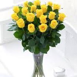 Morristown Florist | 18 Yellow Roses