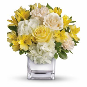 Morristown Florist | Bright Collection